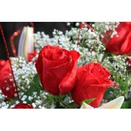 Růže + konvalinka 10ml