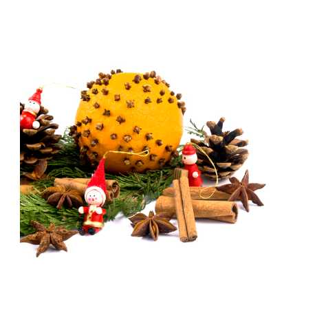 Vánoční fantazie 10ml