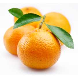 Mandarinková silice 10ml