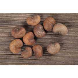 Baobab olej LZS 100 ml
