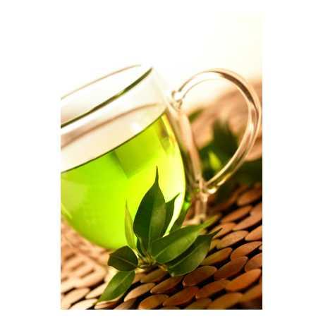Extrakt ze zeleného čaje 12ml