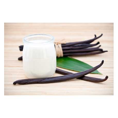 Vanilkové mléko 10ml