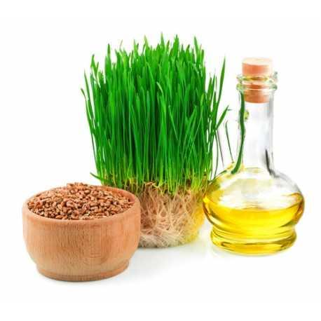 Olej z pšeničných klíčků 100 ml