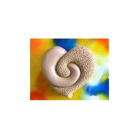 Silikonová forma na mýdlo srdíčko spirála